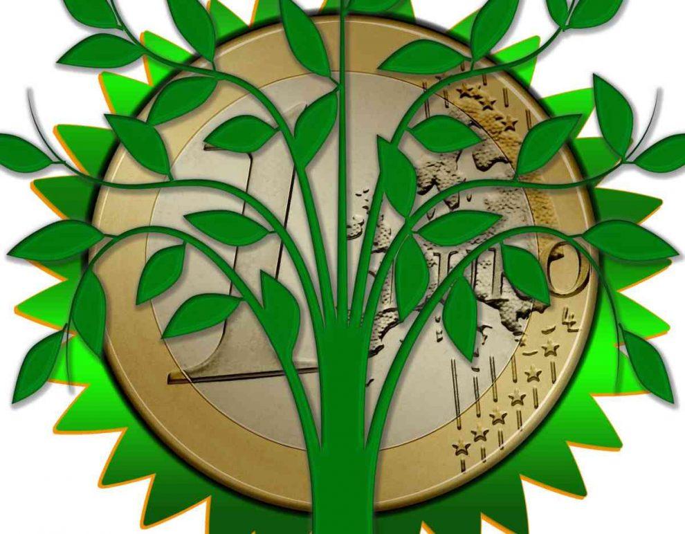 dofinansowanie ochrony środowiska Program LIFE