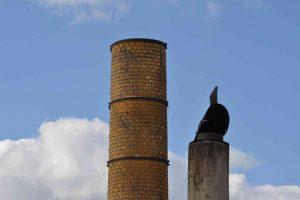 edukacja ekologiczna i ograniczanie emisji