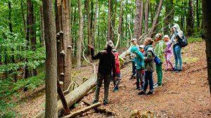 ścieżki edukacyjne i ekoturystyka