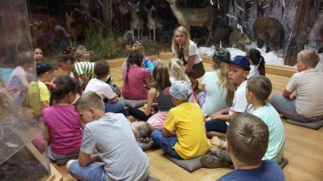 W Trosce o Środowisko – przyroda widziana oczyma dziecka