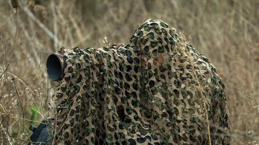 Czy wolno fotografować dzikie zwierzęta?