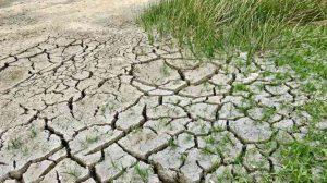 Niezbędna retencja wody