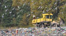 Odpady – można potwierdzić kwalifikacje