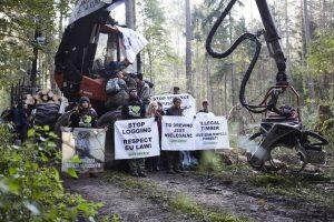 Blokada wycinki w Puszczy