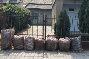Odpady zielone i kuchenne