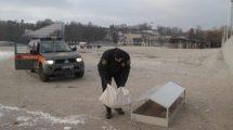 zimą pomagają zwierzętom