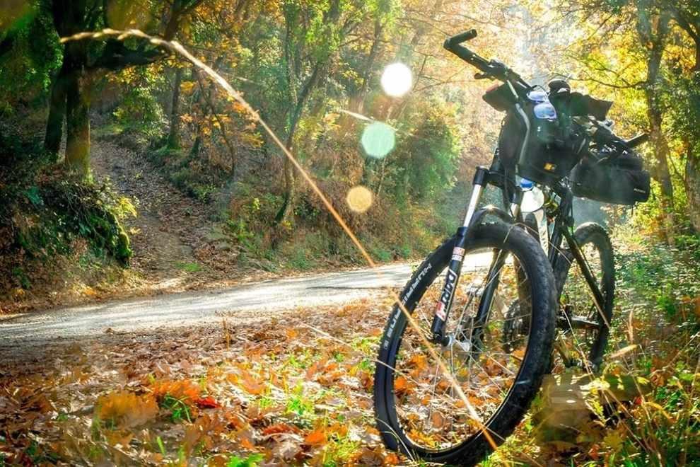 odcinek trasy rowerowej