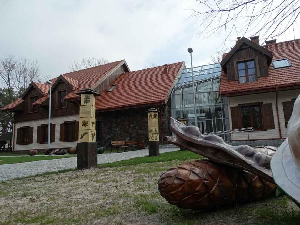 edukacja przyrodnicza Lasy Warszawy