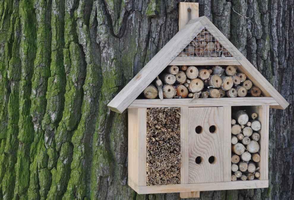 Edukacja ekologiczna i ochrona przyrody