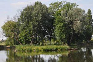 na ochronę bioróżnorodności