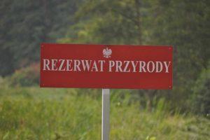 RDOŚ udostępnił rezerwat przyrody
