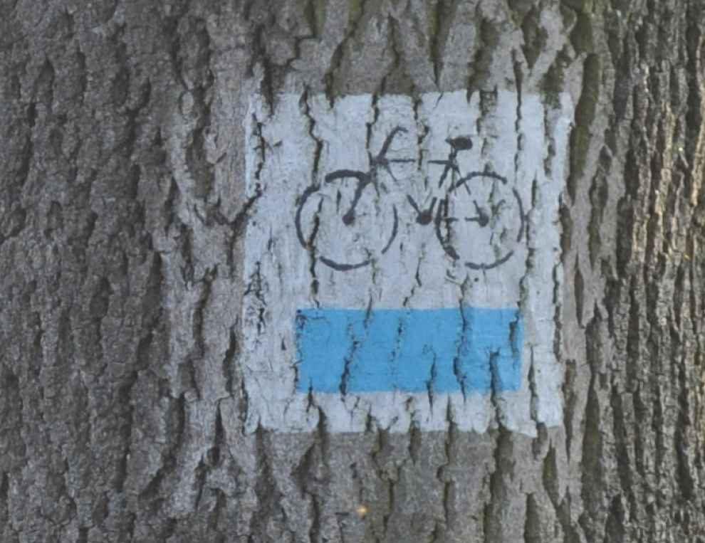 Trasa rowerowa w rezerwacie przyrody