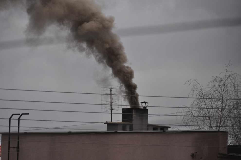 apel w sprawie jakości paliw stałych