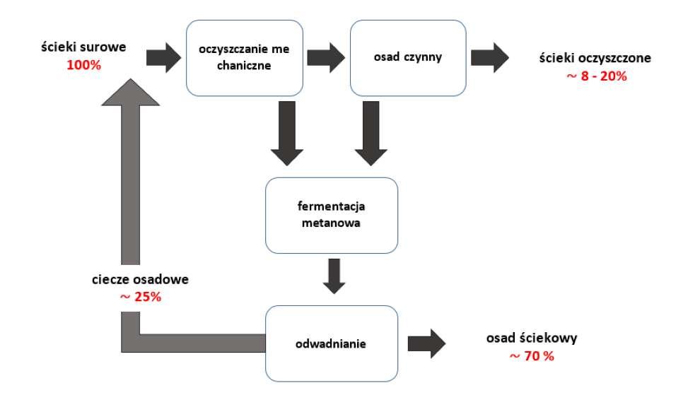 usuwanie mikroplastiku w procesie oczyszczania ścieków