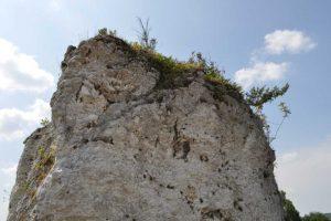 Geologia w konkursie fotograficznym