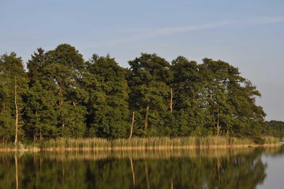 Wod-kan i środowisko