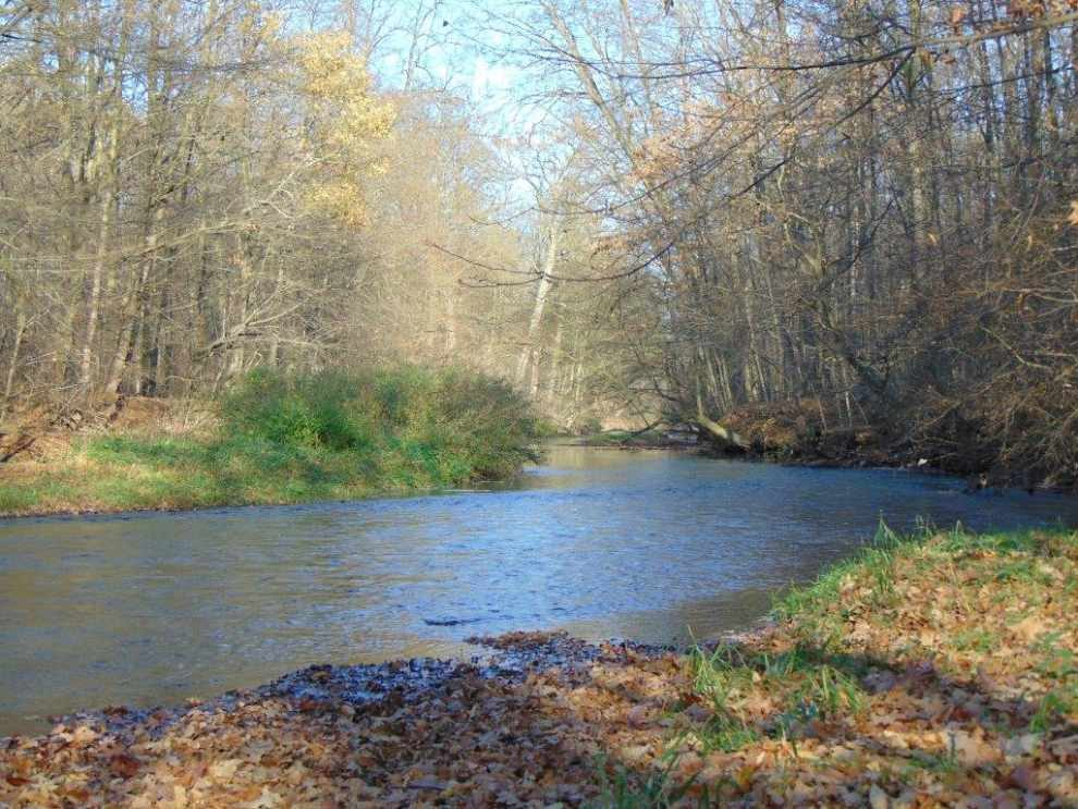 Na straży rzek