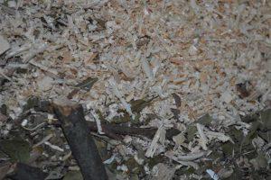 Energia z biomasy