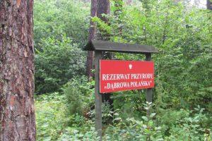 W rezerwacie przyrody