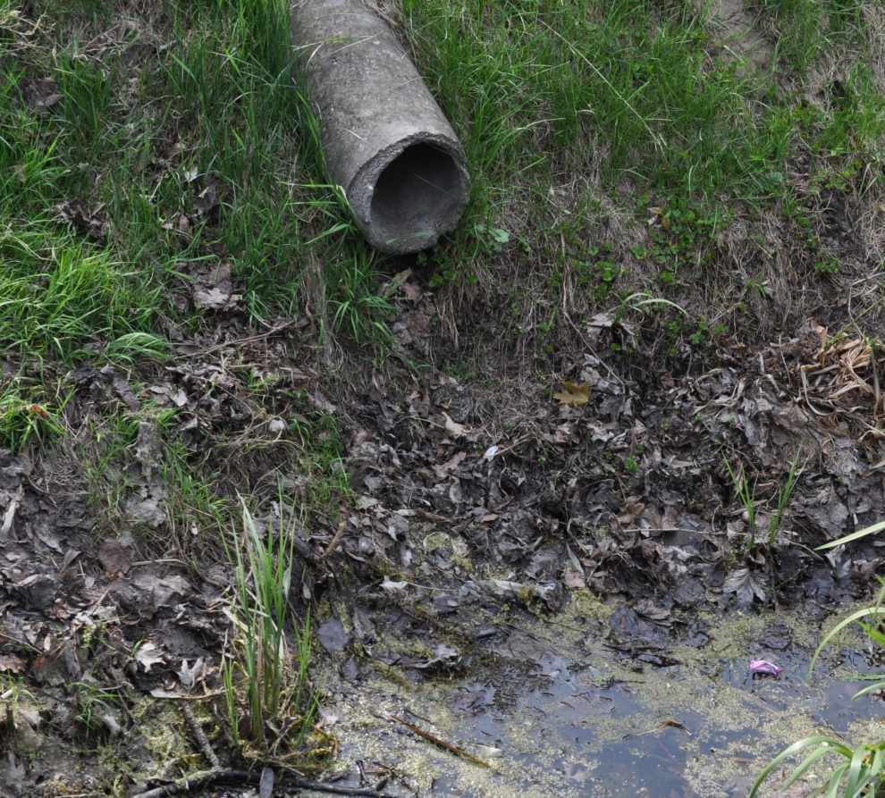 O kolejnej nowelizacji Prawa wodnego