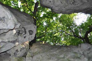 Wartości geologiczne rezerwatów
