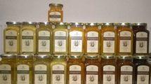 chronią pszczoły i promują pszczelarstwo