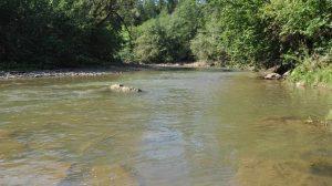 Jak chronić się przed powodziami i suszami