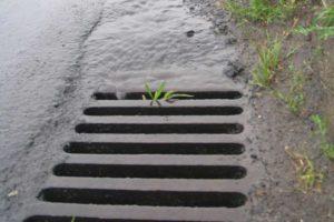Ruda Śląska zagospodarowuje deszczówkę