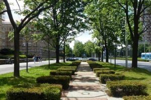 wypracują proekologiczne standardy ulic