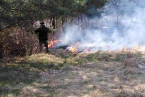 Wypalanie łąk
