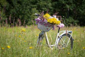 ścieżka rowerowa na nieczynnym torowisku