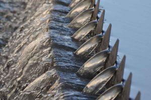 Gospodarka wodno-ściekowa poza aglomeracjami