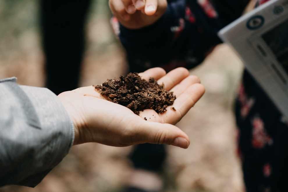 edukacja ekologiczna dla uczniów