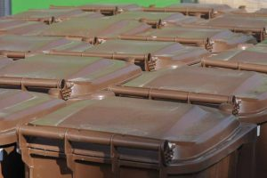 segregować bioodpady