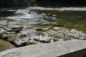 Odtworzenie ciągłości ekologicznej