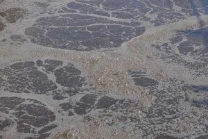 oczyszczalnia ścieków w Hażlachu