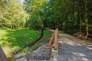 Odnowiona zieleń w Bytomiu
