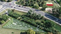 Zielony labirynt w Ciechanowie