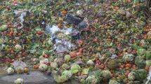 Przeciwdziałanie marnowaniu żywności