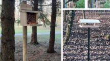 karmniki dla ptaków i wiewiórek