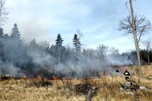 Zagrożenie pożarami w lasach