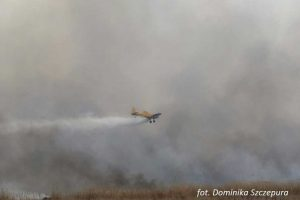Cztery samoloty gaszą pożar