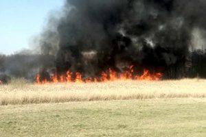"""pożar łąk """"naturowych"""""""