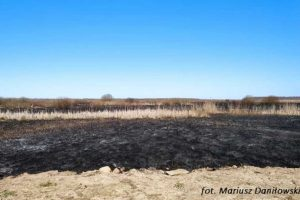 Gaszenie pożaru w parku narodowym
