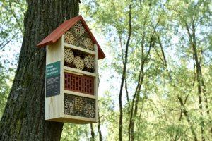 150 domków dla owadów