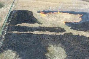 Ukarani za wypalanie trawy
