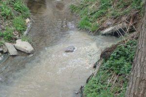 Zrzuty ścieków do rzek