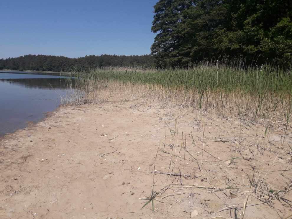 Katastrofa ekologiczna na Jeziorze Głębokim