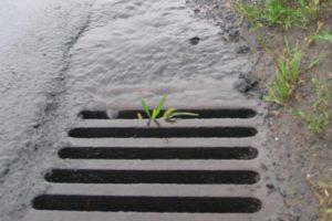 Na rzecz poprawy gospodarowania wodami opadowymi