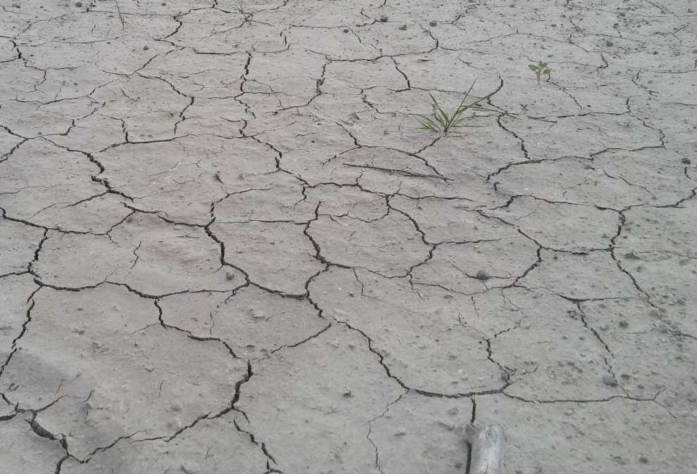 o współdziałaniu miast w sprawie suszy